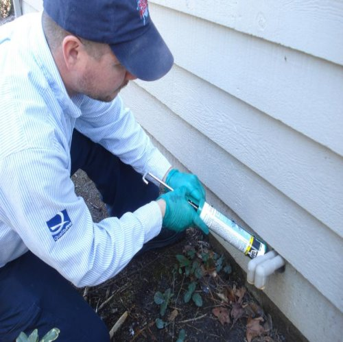 Green Pest control Myrtle Beach